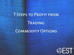 Increase your ROI on trades by minimizing risk through trading commodity options